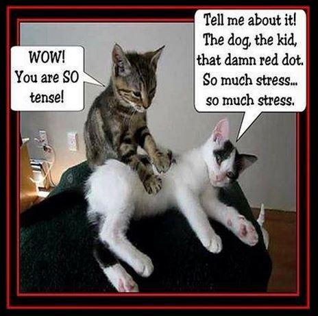 stresu