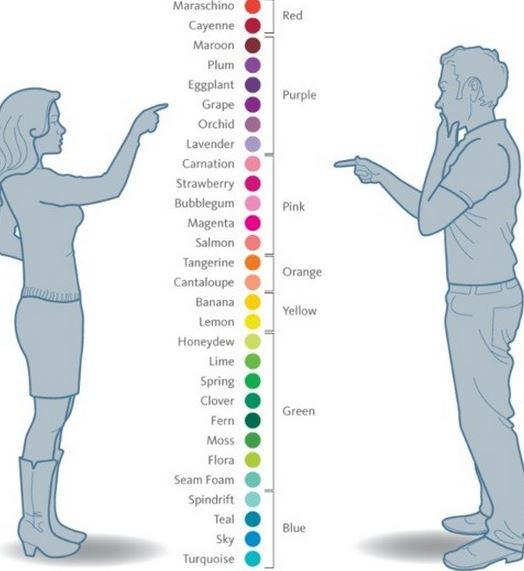 culorile la femei si la babrbati